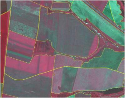 Система космического мониторинга сельскохозяйственных угодий Пермского края на основе данных дистанционного зондирования