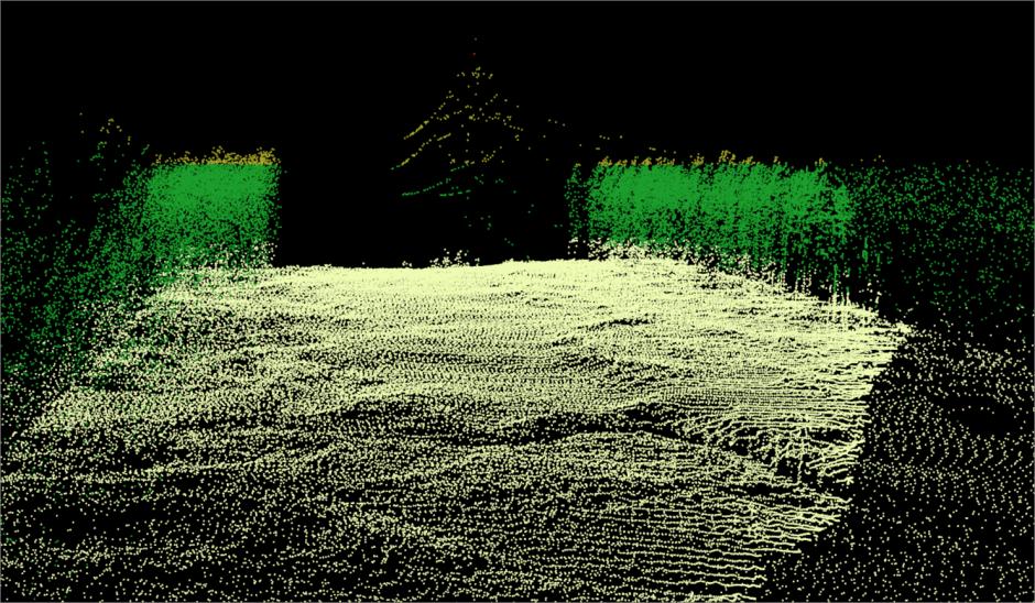 Разработка автоматизированной технологии проведения лесоустроительных работ на основе комплексирования данных космической съемки и воздушного лазерного сканирования